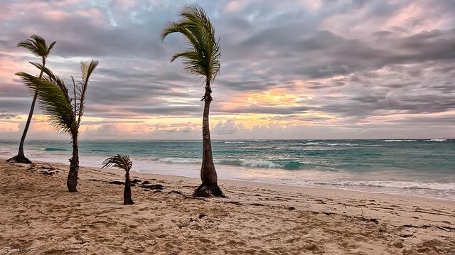 beach-1853091_640